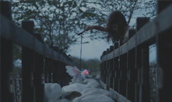"""""""Boi Neon"""", premiado filme de Gabriel Mascaro, entra em circuito nacional dia 14 de janeiro"""